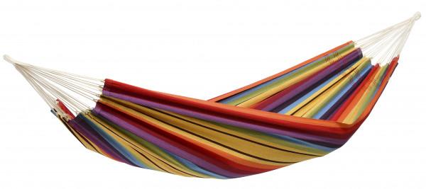 Barbados Rainbow